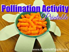 A hands-on science activity that really digs into pollination for children and PRINTABLE. Chemistry Experiments For Kids, Science For Kids, Life Science, Stem For Kids, Science Lessons, Lessons For Kids, Science Fun, Middle School Science, Physical Science