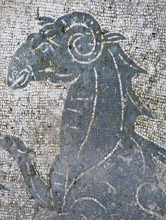 Classic black and white mosaics in the ruins of Ostia Antica in Lazio Italy 1st century BCE - 3rd century CE (26), via Flickr.