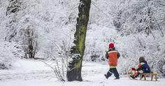 Crianças brincam com um trenó em um parque coberto de neve em Berlim, Alemanha.  Fotografia: Hannibal Hanschke/Reuters.