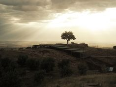 """Early morning light over the main excavation area and the """"wishing tree"""" at Göbekli Tepe. Start of an excavation day in spring Photo O. Morning Light, Early Morning, Maine, Sunset, Spring, Outdoor, Sunsets, Outdoors, Outdoor Living"""