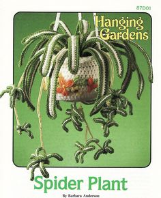 Spider Plant Crochet Pattern Plant Pot Hanging Gardens Series Annies Attic