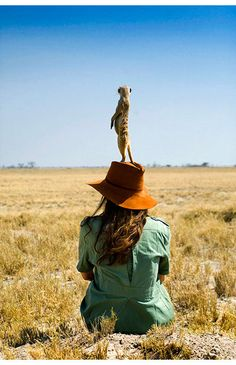 Check out the top 10 best safari camps in Botswana. Stay at the best Botswana safari camps for the most incredible safari experiences. Africa Destinations, Adventure Aesthetic, Out Of Africa, African Safari, Africa Travel, Travel Photographer, Animal Photography, Cute Animals, Wildlife