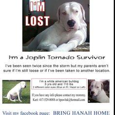 Victim of the Joplin tornado, repin and help reunite a family.