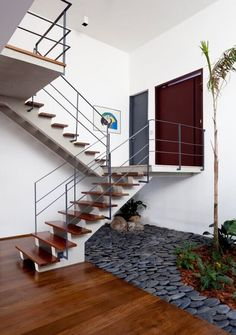 Renovated townhouse in são paulo with inspired indoor garden мариана Entryway Stairs, House Stairs, Inside Garden, House Inside, Backyard Buildings, Wooden Steps, Shop Fittings, Small Space Gardening, Garden Spaces