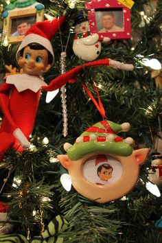 Elf brings his own picture ornament to our Christmas Tree!