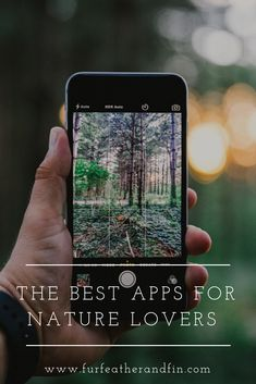 Use these apps to help you recognise and identify animals, birds and plants when out and about in nature! Best Apps, Lovers, Birds, Good Things, Nature, Plants, Blog, Outdoor, Animals