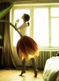 photography illusion dancer flower - Szukaj w Google