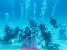 channel islands de californie | 水中結婚式・水中PV撮影 | HONEYDIVE(ハニーダイブ)で ...