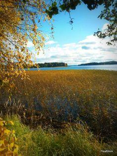 Väinölänniemi - Kuopio - Finland