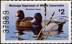 Mississippi Duck Stamp Painting