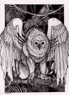 kikiyaon- African cryptid: a huge owl that had enormous talons and spurs on its shoulders. It is a forest dweller.