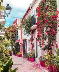 Marbella is an amazing place in Spain. It's full color positive atmosphere and wonderful people. Generally Marbella is a great place to travel. Marbella Old Town, Marbella Malaga, Veranda Magazine, Beautiful Streets, Beautiful Places To Travel, Foto Art, Spain Travel, Beautiful Flowers, Colorful Flowers