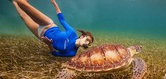 5/23/13 - World Turtle Day - celebrate with Kate Walsh!!