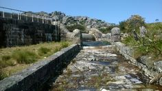 Hely Hutchinson Dam (The fifth of five dams on Table Mountain). Photo by Willem Breyl Table Mountain, Most Beautiful Cities, Cape Town, City, World, Cities, The World