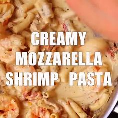 Salmon Pasta with Sun-Dried Tomato Cream Sauce and Spinach - Julia's Album Creamy Shrimp Pasta, Pesto Shrimp, Garlic Shrimp, Basil Pesto, Pesto Chicken, Chicken Broccoli, Shrimp Recipes For Dinner, Seafood Recipes, Pasta Recipes