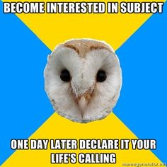Fuck yeah bipolar owl....going through that this exact second LOL