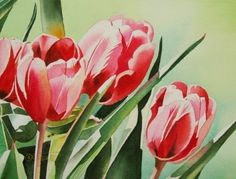 Tulip+Grouping,+painting+by+artist+Jacqueline+Gnott
