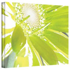 Herb Dickinson 'Gerber Time IV' Gallery-Wrapped Canvas