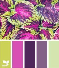 verdes y purpuras