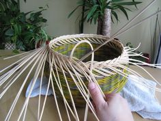 16) Zavírka Farah1 - Pedig a košíky Basket Weaving Patterns, Paper Basket, Plant Hanger, Projects To Try, Floral, Home Decor, Crochet Tablecloth, Towels, Craft
