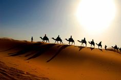 Camel caravan crosses the Sahara desert in Morocco. Image credit: Bachmont / CC BY 2.0.
