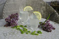 """Granskudd har en forfriskende smak og egner seg også finti en kald lemonade, som smaker godt i vårsola.Denne er laget med sitron, fritt etter en oppskrift jeg fant i det svenske bladet """"Träd…"""