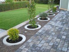 Planteringsring till träd i entreträdgård?