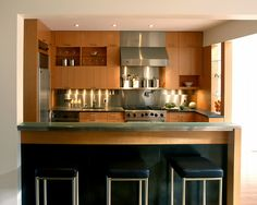 Modern Condo Kitchen Design, Pictures, Remodel, Decor and Ideas - page 26