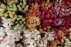 Spring is for sale by Jeremy Nathan, via Flickr