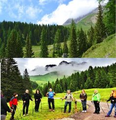 Nordic Walking in Trentino per il trekking del benessere Cape Peninsula, The finest Nordic Walking peninsula in the world Trekking, Walking Poles, Nordic Walking, Low Impact Workout, See Videos, Nova Scotia, Cross Training, The Beatles, South Africa