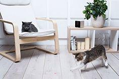 Petcube Interactive Wi-Fi Pet Camera: £139.00