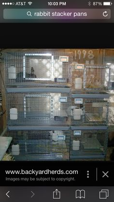 Stacker cages. Rabbits.