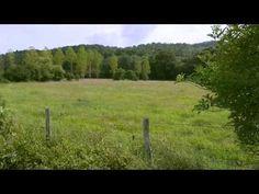 La ferme du Bec Hellouin - YouTube