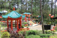 reasons why you should visit Baguio Botanical Garden at least once in your life - Travel Philippines Now Tourist Spots, Vacation Spots, Most Beautiful, Beautiful Places, Garden Labels, Baguio City, City Aesthetic, Exotic Flowers, Botanical Gardens