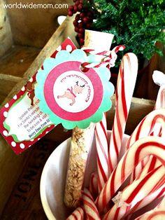 Quest'anno mi sono concentrata molto di più sulla Magia del Natale. L'elfo, la…