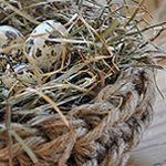 Crochet Jute Nest