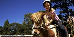 Kids Pony Rides in Centennial, On every Saturday and Sunday (including public holidays), 2 to 11 year olds can enjoy a hand–led short pony ride at the Horse Track in the corner of Grand Drive and Parkes Drive (near Centennial Parklands Dining)