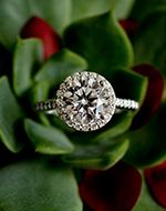 Halo Diamond Engagement Ring | Brilliant Earth
