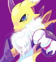 Renamon. Favourite digimon ever. You know, and Kyubimon. Love me kyubimon.