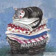 Cat asleep on pile of sheets in laundry basket - the softest bed in the house!  .... by Alex Clark ....