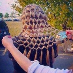 this is awesome! it would be so perfect for crazy hair day at school! Looks like I would go crazy lol Crazy Hair Day At School, Crazy Hair Days, School Hair, Pretty Hairstyles, Braided Hairstyles, Crazy Hairstyles, Teenage Hairstyles, Hairstyle Ideas, Children Hairstyles