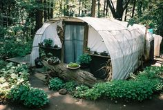 """cabinporn: """"Squat shelter in Yoyogi Park, Tokyo, Japan. Contributed by Pip Jones. """""""