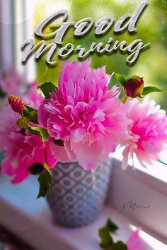 Mimi Gif: Good Morning