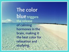 The color blue triggers the release of calming hormones in the brain, making it the best color for relaxation and studying.