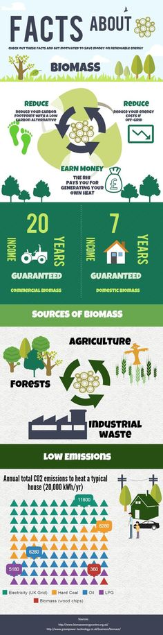 Biomass for Renewable Energy The Stats You Need to