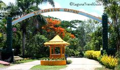 Travel information and tips about Laguna, Philippines. Your guide to a perfect vacation in Laguna - find hotel accommodations, resorts, tourist attractions and many more. Find Hotels, Travel Information, Philippines, Travel Guide, Gazebo, Outdoor Structures, Vacation, Park, Places