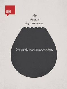 You are not a drop in the ocean. You are the entire ocean in a drop. #Rumi…