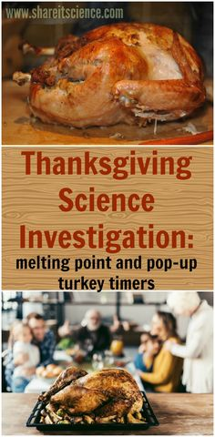 Learn more about how a pop-up timer works with this easy Great for the classroom during the days before or to keep kids busy while you prepare the feast! Food Science Experiments, Preschool Science Activities, Science Curriculum, Stem Science, Science For Kids, Thanksgiving Activities For Kids, Thanksgiving Recipes, Thanksgiving Turkey, Activities For Autistic Children