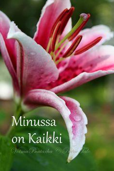 Voimarunot & voimakortit vko Minussa on kaikki Affirmation Cards, Wells, Self Love, Affirmations, Poems, Motivational Quotes, Wisdom, Life, Finland