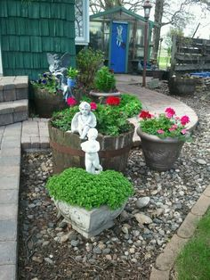 The spring look for my rural garden along rhe walkway to my greenhouse